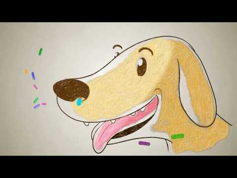 """How do dogs """"see"""" with their noses? - Alexandra Horowitz thumbnail"""
