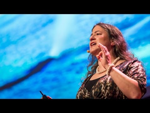 How whales breathe, communicate...and fart with their faces - Joy Reidenberg thumbnail