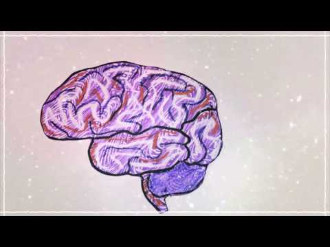 The neuroscience of imagination - Andrey Vyshedskiy thumbnail