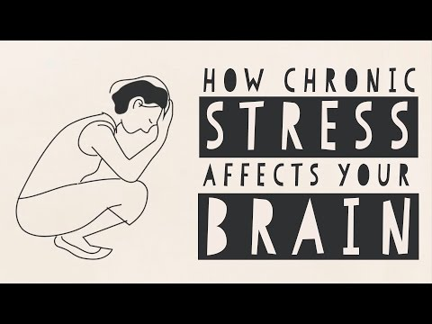How stress affects your brain - Madhumita Murgia thumbnail