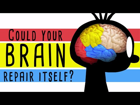 Could your brain repair itself? - Ralitsa Petrova thumbnail