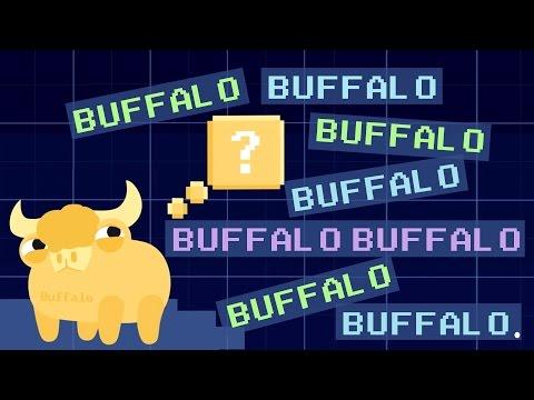 Buffalo buffalo buffalo: One-word sentences and how they work - Emma Bryce thumbnail