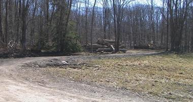 Body discovered in the Town of Randolph