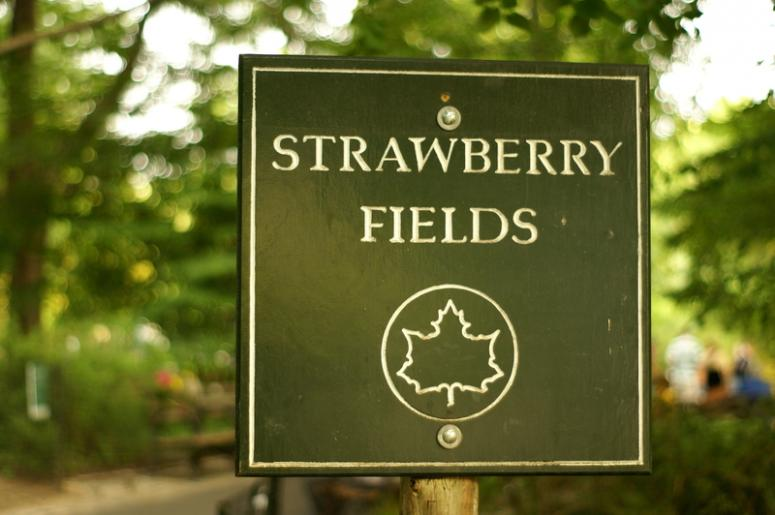 Strawberry Fields of Central Park in New York City, in the memory of John Lennon by Ono Yoko.