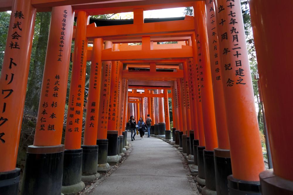 red tori gate in Fushimi Inari Shrine_349895765