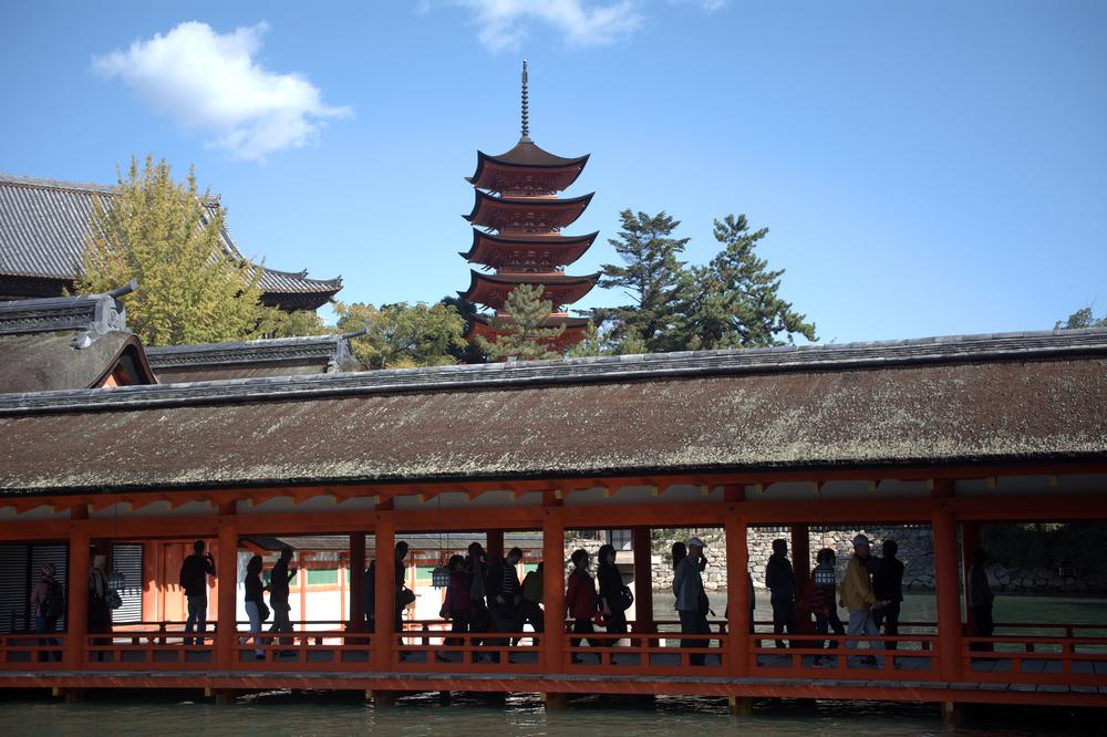 Itsukushima Shrine_336105197