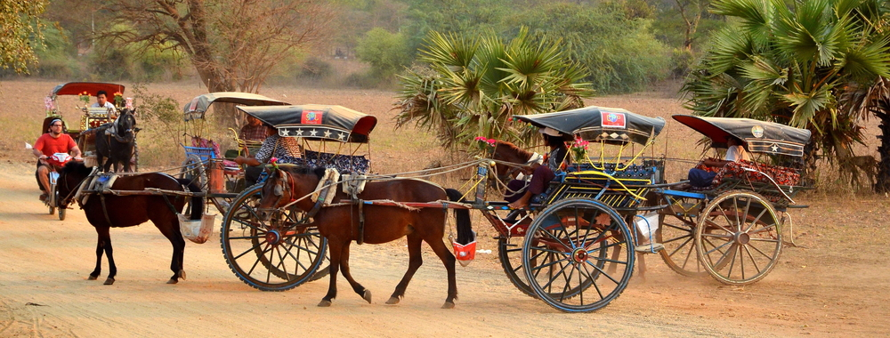 Carts on background Ananda Temple_321988205