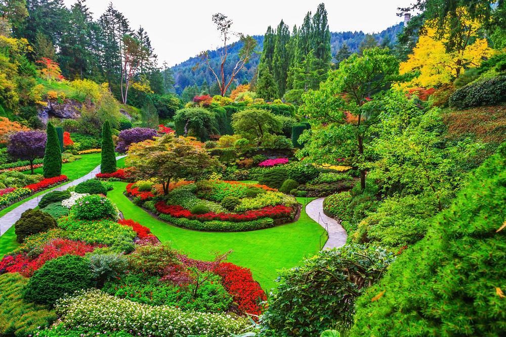Butchart Gardens - gardens on Vancouver Island_320965514