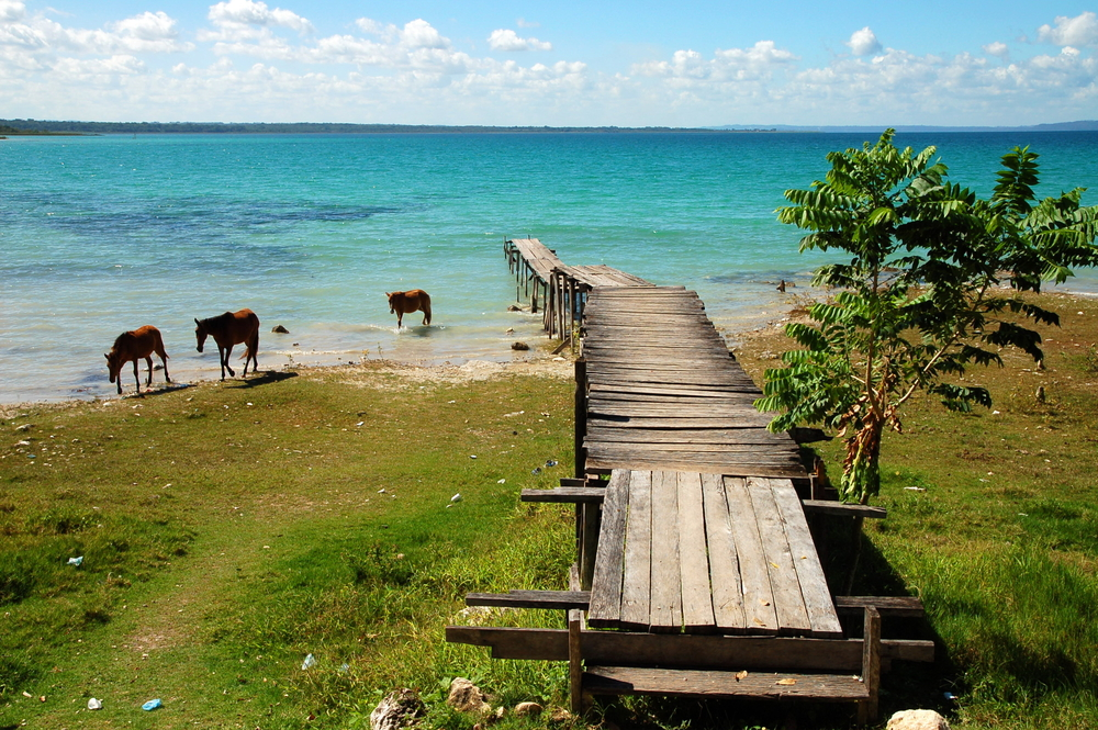 Blue Lake with Horses in Guatemala_156170933