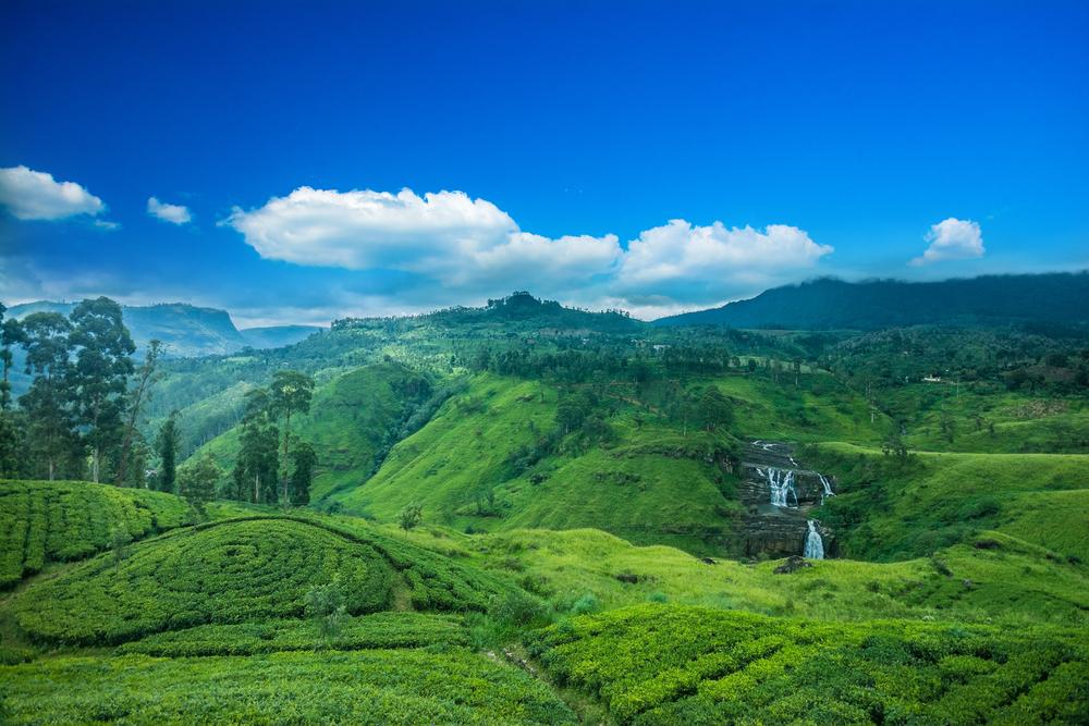 clairs waterfall landscape in Sri Lanka_382737745