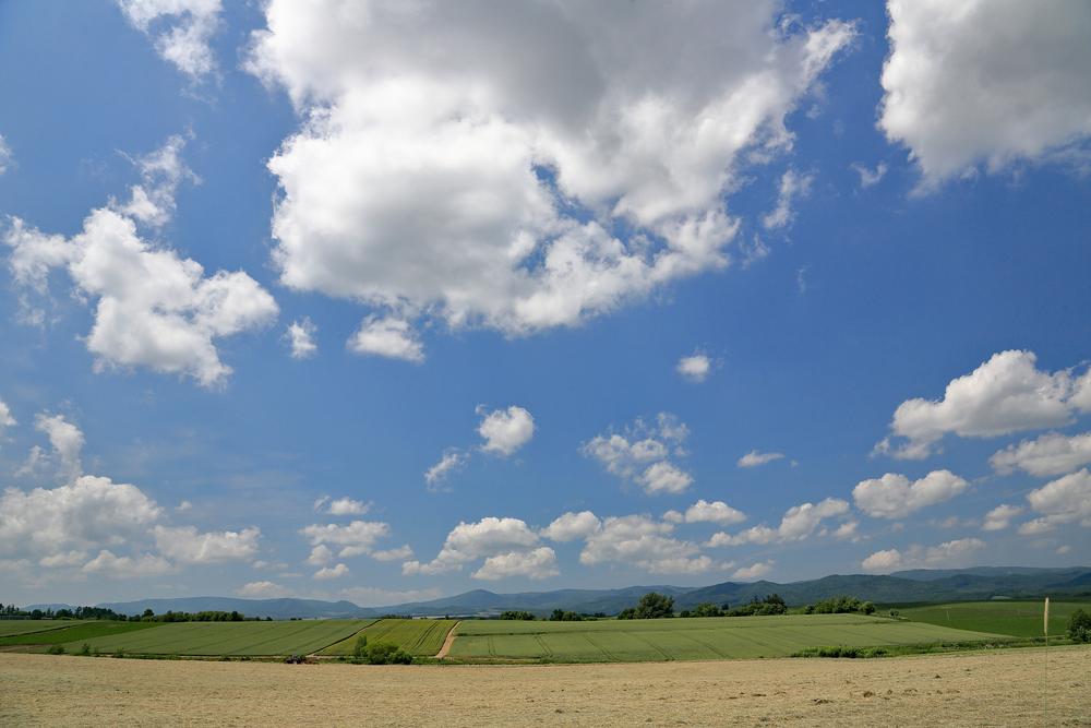 beautiful view of hokkaido japan_403864663