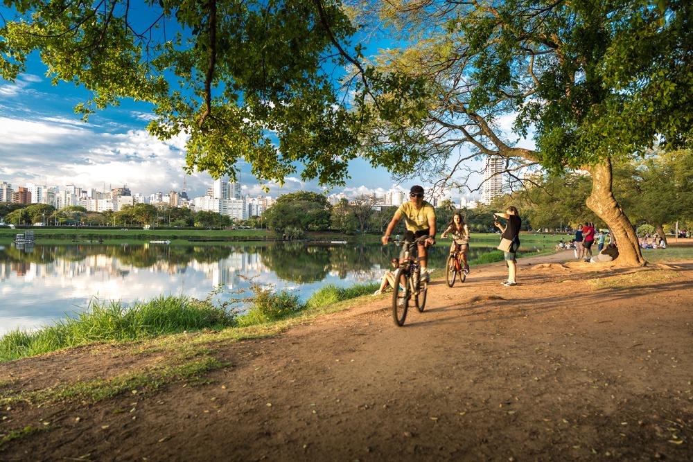 Ibirapuera Park_304960259