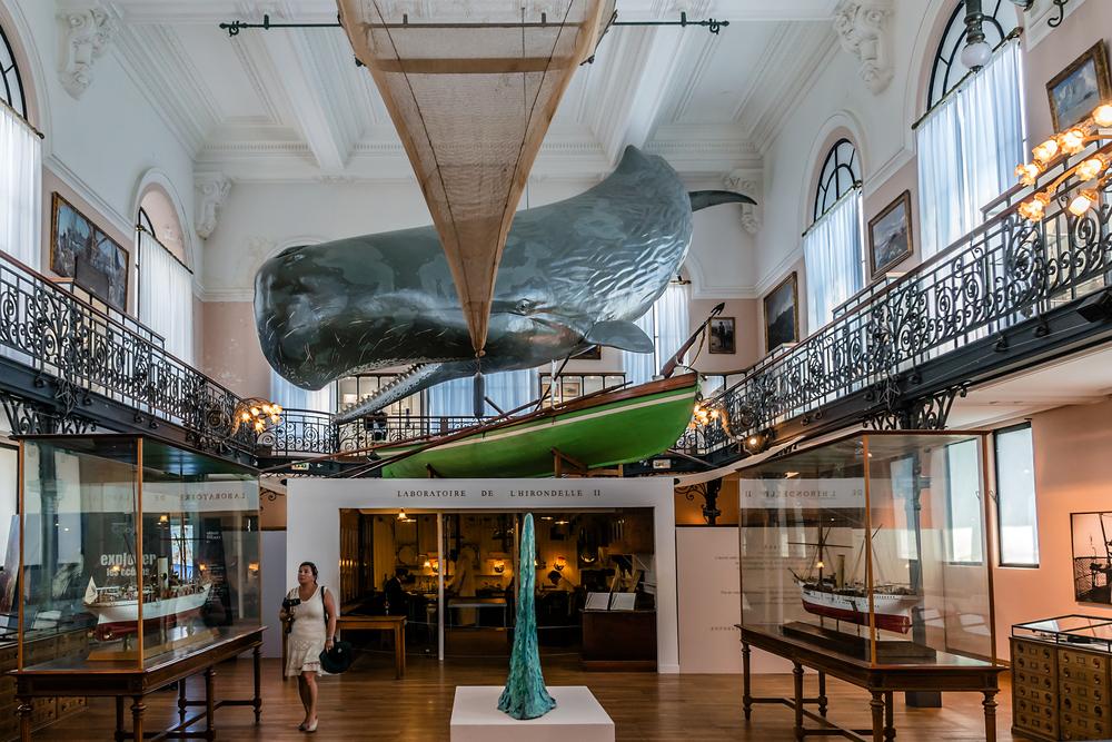 Interior of Oceanographic Museum in Monaco _382249669