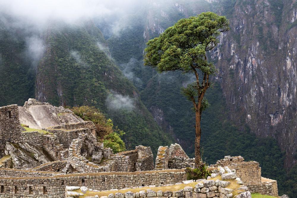 Machu Picchu_228804088