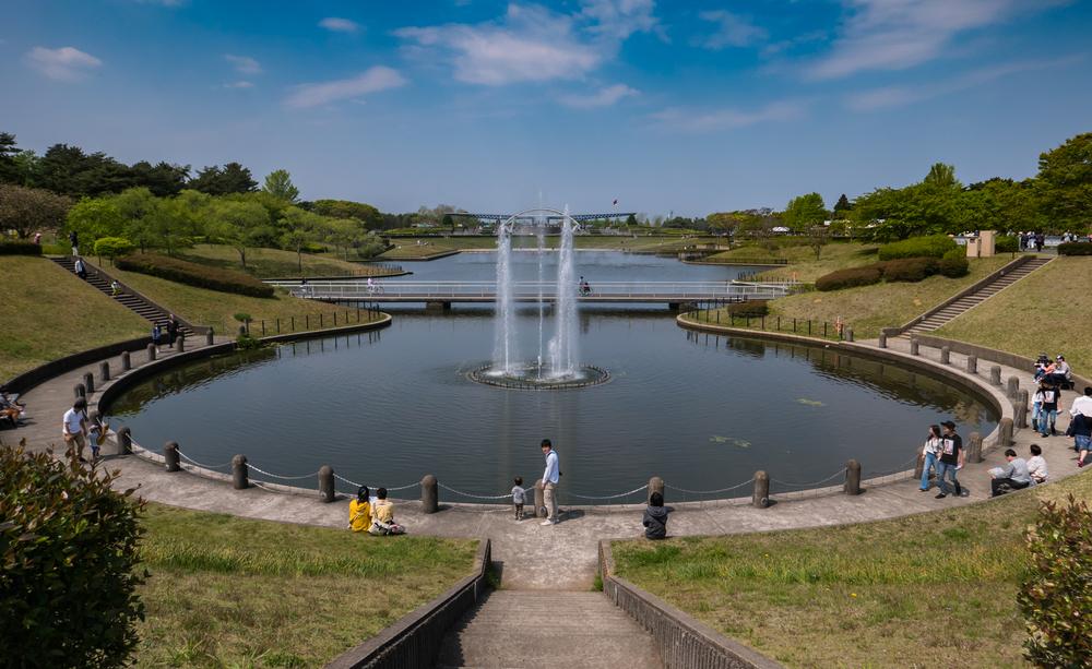 Tourists at Hitachi Seaside Park_472968520