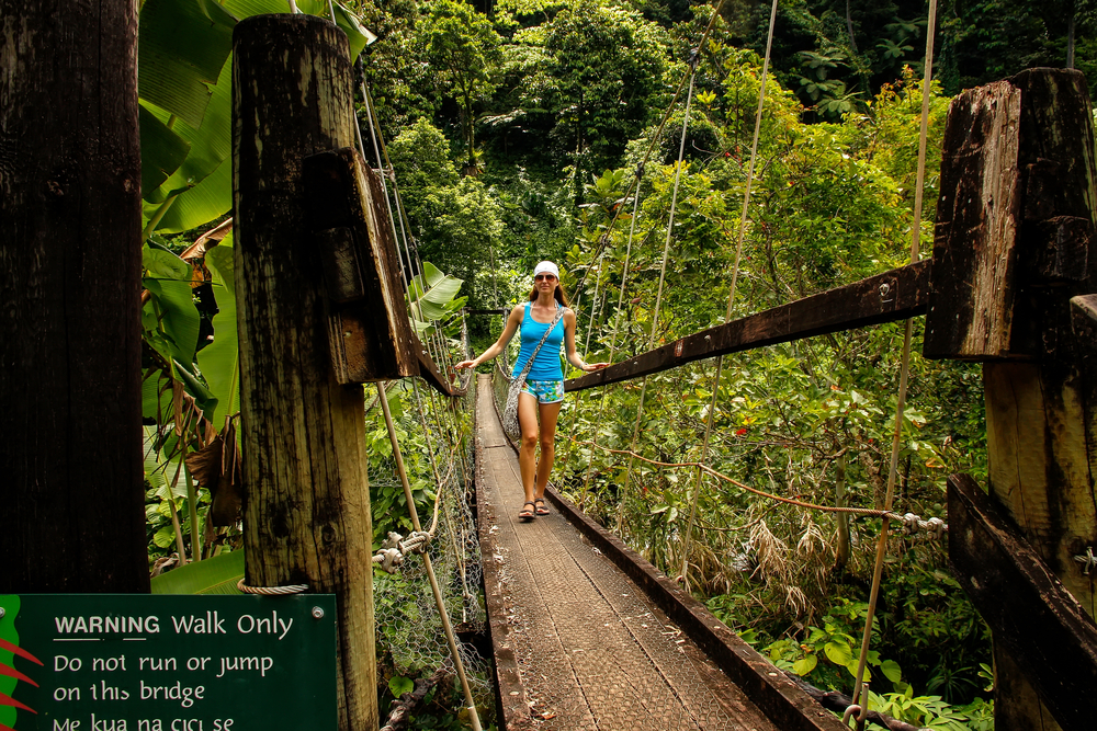 bridge-over-wainibau-stream-lavena-coastal-walk-taveuni-island_519888241