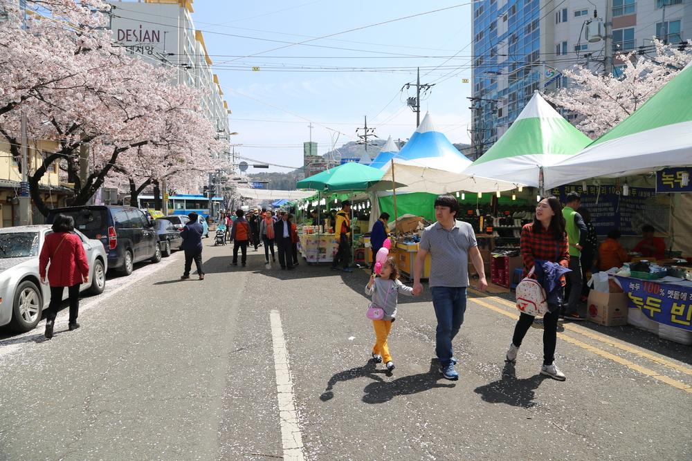 jinhae-gunhangje-festival-in-busan_524186338