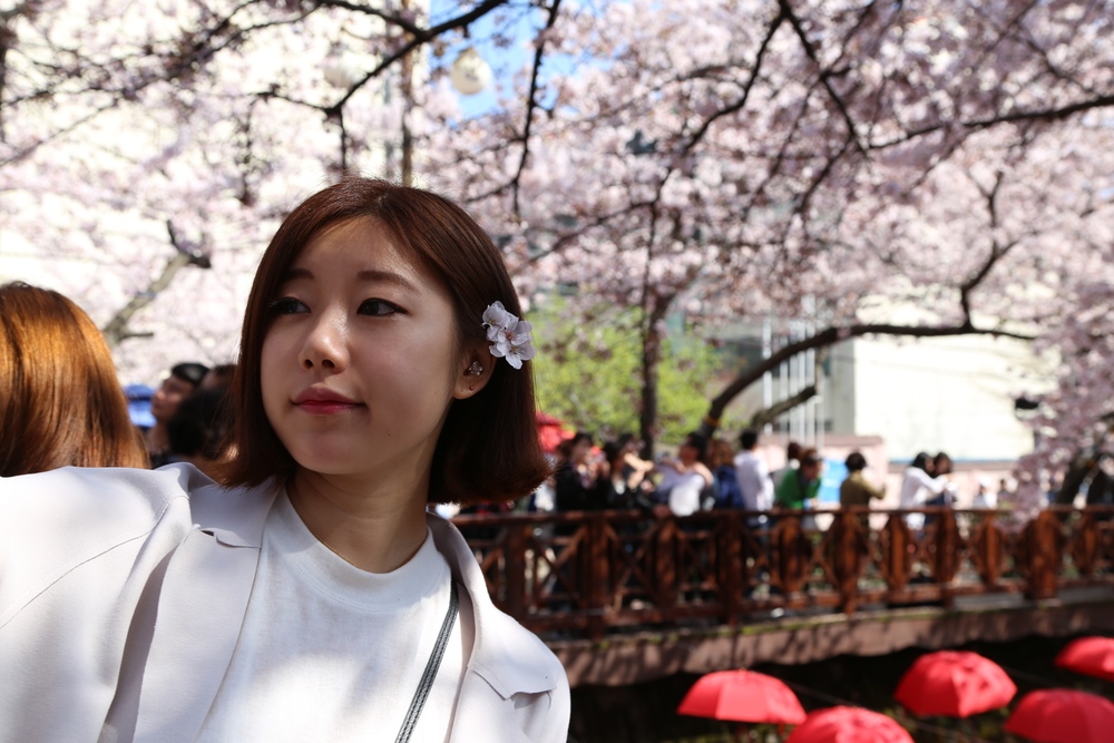 yeojwacheon-romance-bridge-in-busan_524091937
