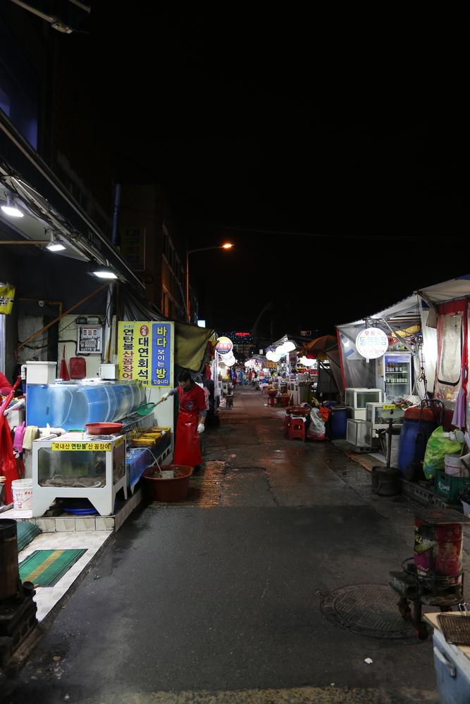 jagalchi-fish-market-in-busan_525832075