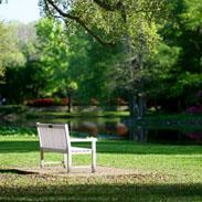 Park Bench at Highland Park