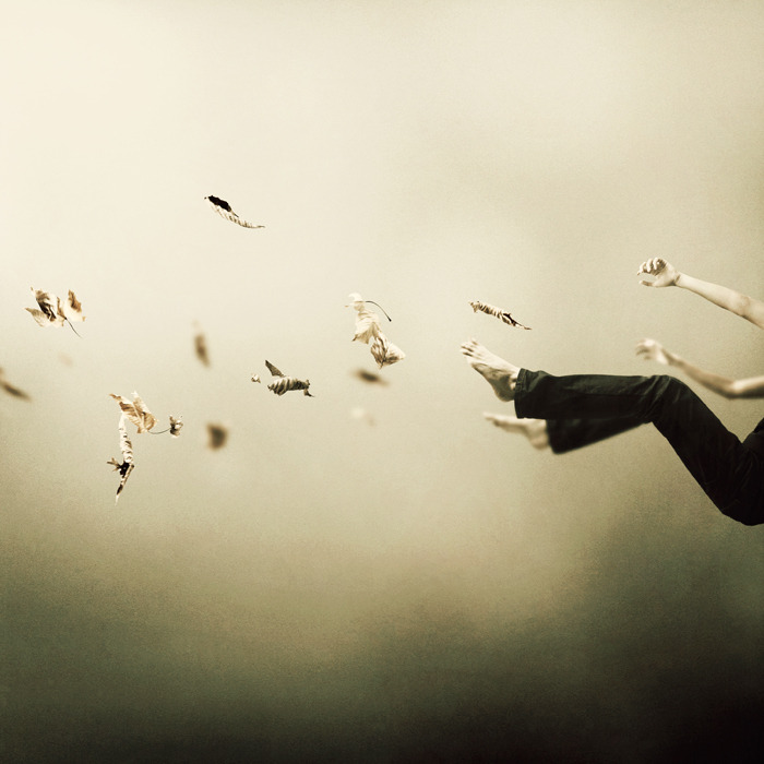 Martin Stranka I Was Falling High Photography, C Type