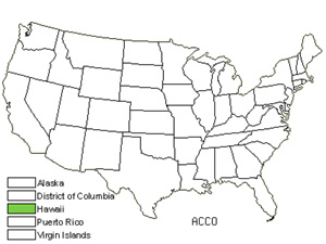 Native States for Small Philippine Acacia (Acacia Confusa)