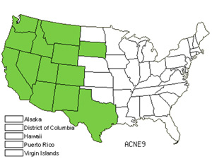 Native States for Columbia Needlegrass (Achnatherum Nelsonii)