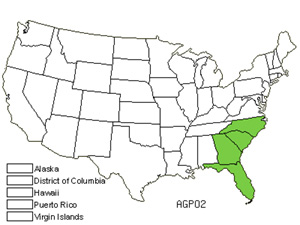 Native States for Florida Hobblebush (Agarista Populifolia)