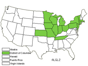 Native States for European Alder (Alnus Glutinosa)