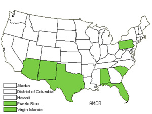 Native States for Spreading Amaranth (Amaranthus Crassipes)