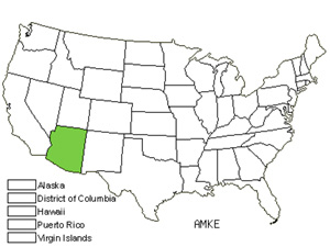 Native States for Kearney's Bluestar (Amsonia Kearneyana)