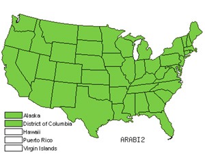 Native States for Rockcress (Arabis)