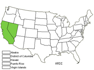 Native States for Pinyon Rockcress (Arabis Dispar)