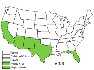 Native States for Ayenia (Ayenia)