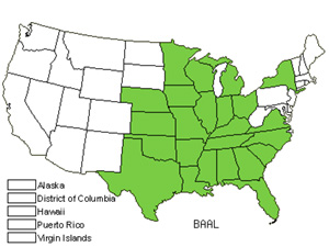 Native States for White Wild Indigo (Baptisia Alba)
