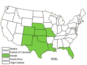 Native States for Caucasian Bluestem (Bothriochloa Bladhii)