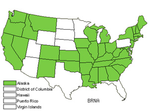 Native States for Rape (Brassica Napus)