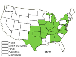 Native States for Nottoway Valley Brome (Bromus Nottowayanus)