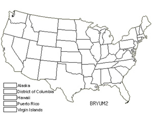Native States for Bryum Moss (Bryum)