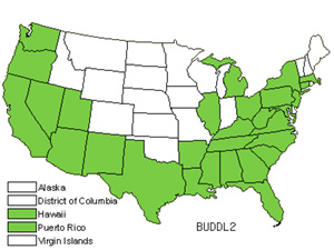 Native States for Butterflybush (Buddleja)