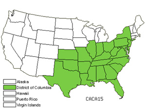Native States for Carolina Sedge (Carex Caroliniana)