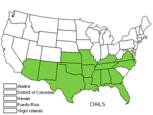 Native States for Alabama Lipfern (Cheilanthes Alabamensis)
