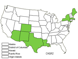 Native States for Fetid Goosefoot (Chenopodium Graveolens)