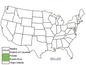 Native States for Dillenia (Dillenia)