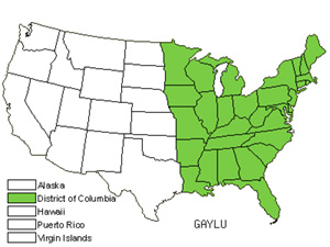Native States for Huckleberry (Gaylussacia)