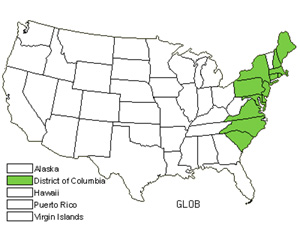 Native States for Atlantic Mannagrass (Glyceria Obtusa)