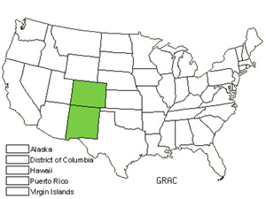 Native States for Sharpleaf Gumweed (Grindelia Acutifolia)