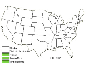 Native States for Haematoxylum (Haematoxylum)