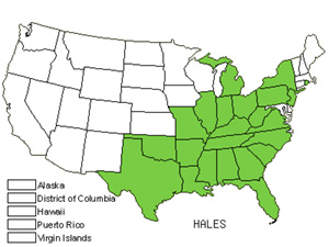Native States for Silverbell (Halesia)
