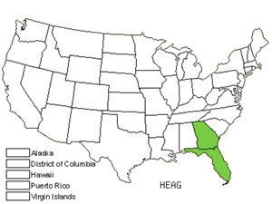 Native States for Southeastern Sunflower (Helianthus Agrestis)